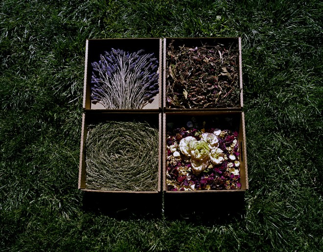 05_lavender_clippings_roses_and_grass_circle_copy