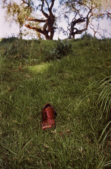 image from Left Behind series: brown shoe on a grassy hillside